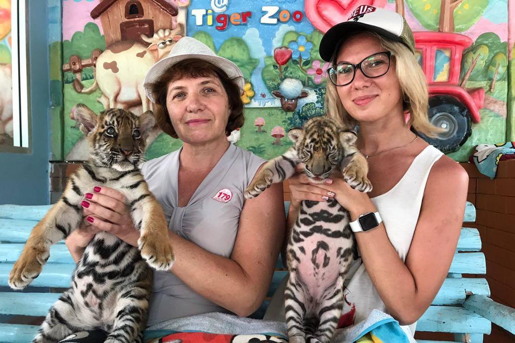 Тигровый зоопарк, Тайланд