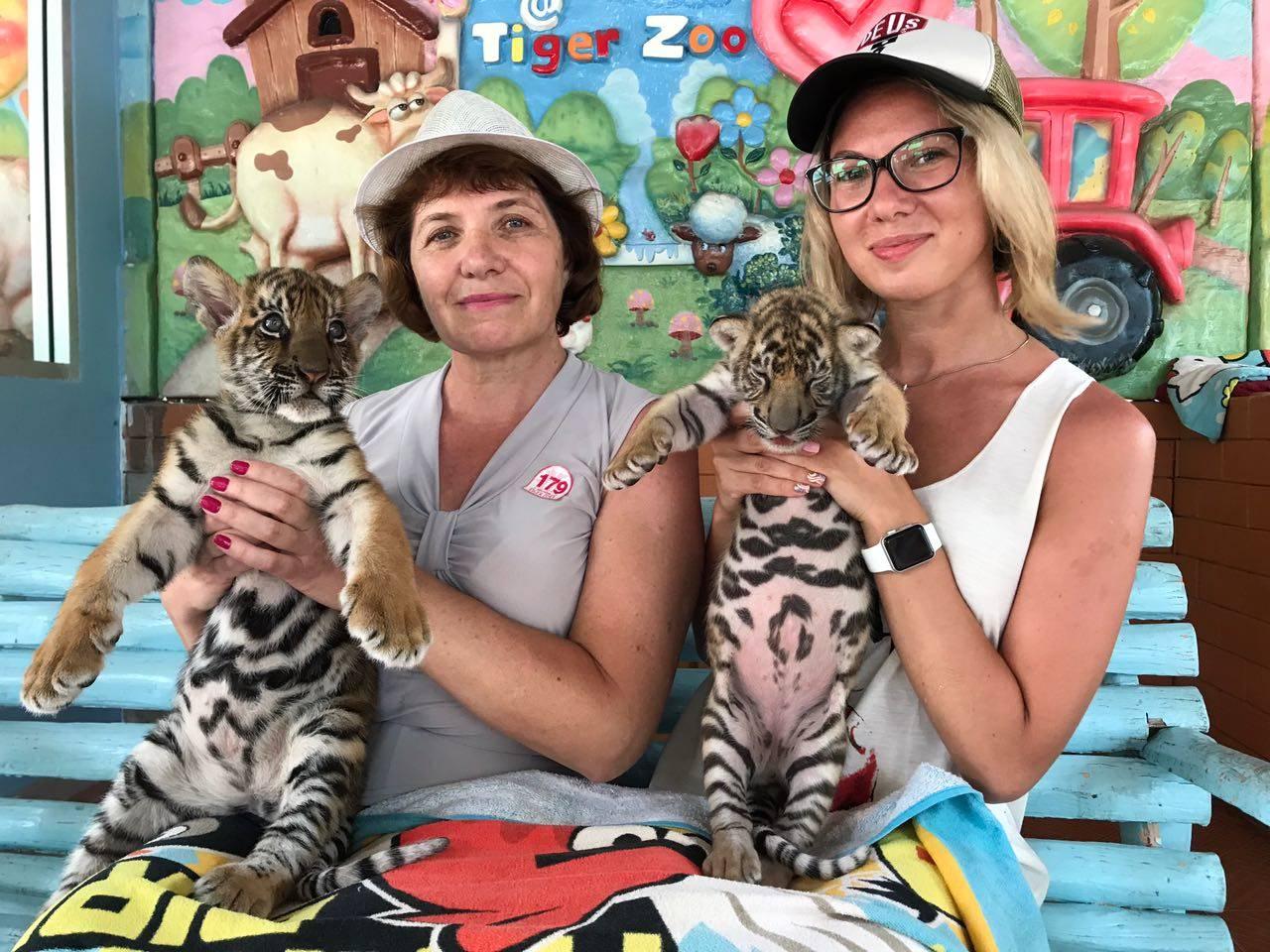 Тигровый зоопарк в Сираче