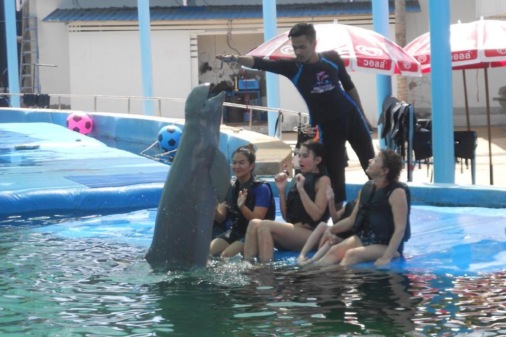 Старый дельфинарий в Паттайе
