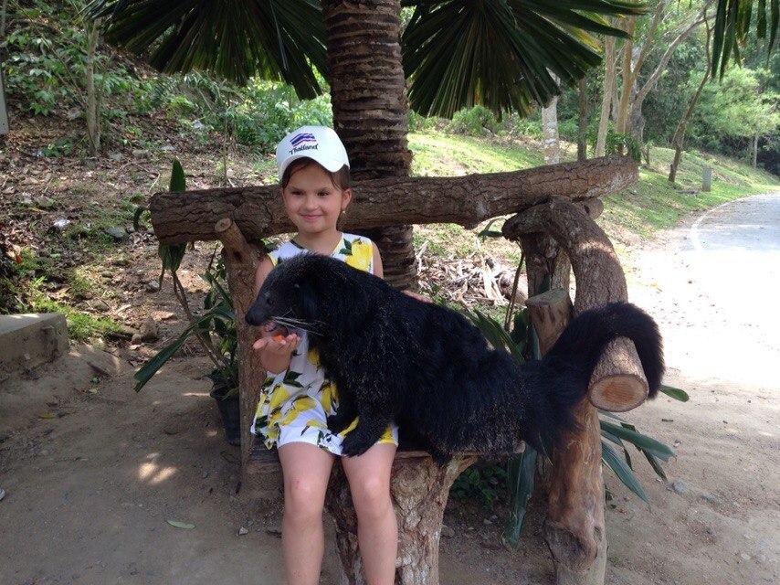 зоопарк кхао кхео отзывы